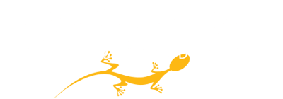 Nomada, Creative events in the United Arab Emirates